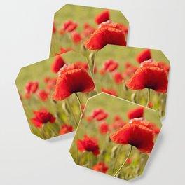 Romantic Poppy field Coaster