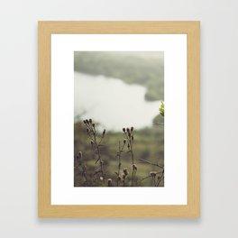 Edinburgh (20) Framed Art Print