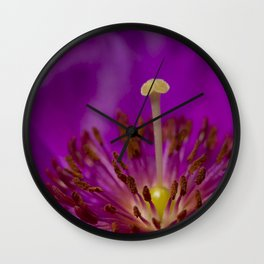 A Macro Image of a Purslane Flower Pistil, Stamen and Petals Wall Clock