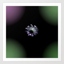 Cactus Flower in the Dark Art Print