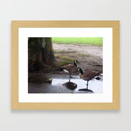 Duck Friendship Framed Art Print
