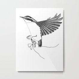 Nuthatch steals a tooth from the tooth fairy Metal Print