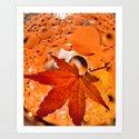 Maple Leave by ludanayvelt