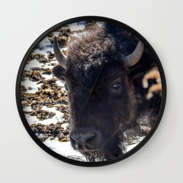 North American Bison by Teresa Thompson Wall Clock