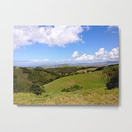 Prefumo Canyon  Metal Print