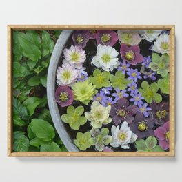 Colorful hellebore flowers Serving Tray