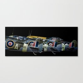 Tail Fins Canvas Print