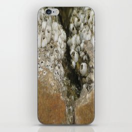 barnicle growth iPhone Skin
