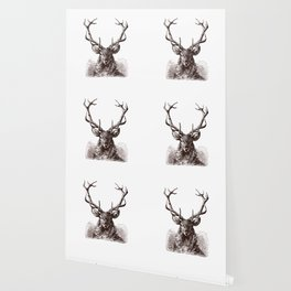 Mature Antlers (no caption!) Wallpaper