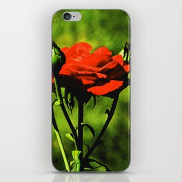 A Kiss from a Rose iPhone Skin