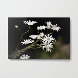 Flannel Flowers Metal Print