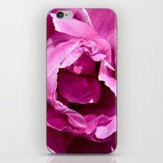 Tulip, No More No Less iPhone & iPod Skin