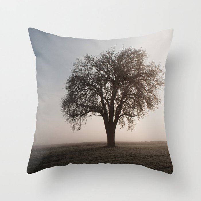 Solitude Frost Throw Pillow