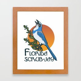 Florida scrub-jay Framed Art Print