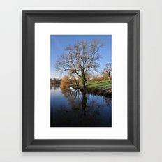 Tree reflection Framed Art Print