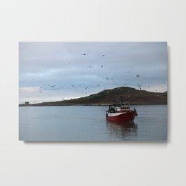 Birds flocking around fishing boat Metal Print