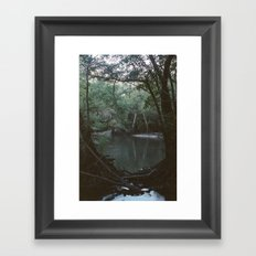Drabby Swampy Creek Framed Art Print
