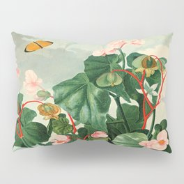 Pink Floral The Oblique-Leaved Begonias : Temple of Flora Pillow Sham