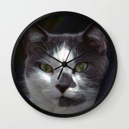 A Domestic Cat Wall Clock