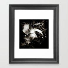 Night of the Living Dead Rose Framed Art Print