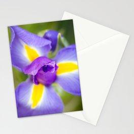 Purple Iris Stationery Cards