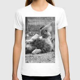 Lions at Play T-shirt