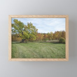 John A. Hutter Memorial Park Framed Mini Art Print