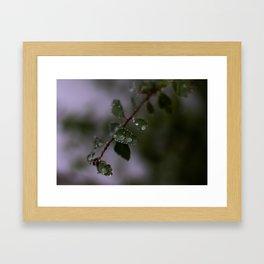 2018-10-09 Framed Art Print