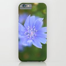 cornflower blue Slim Case iPhone 6s