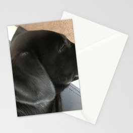 Lab Puppy Stationery Cards