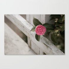 Pink Porch Flower Canvas Print