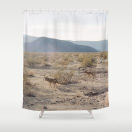 Panamint Valley Coyotes Shower Curtain