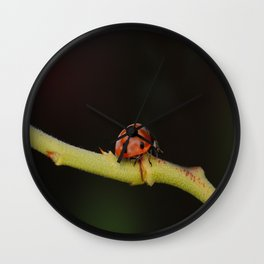 Ladybug On A Twig Wall Clock