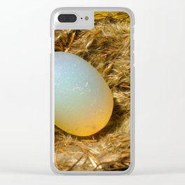 egg + nest Clear iPhone Case