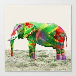 Kleure De Afrika Canvas Print