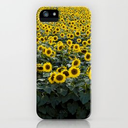 Sunflower Field | Hapinnes iPhone Case