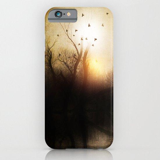 Dark sunset iPhone & iPod Case