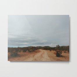 DESERT III / Joshua Tree, California Metal Print