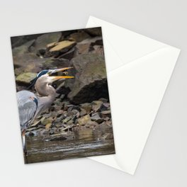 A Great Blue Heron Tosses A Fish In Its Mouth Stationery Cards