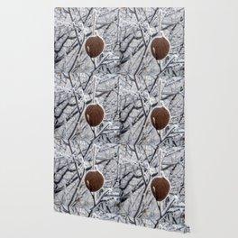Winter leaf Wallpaper