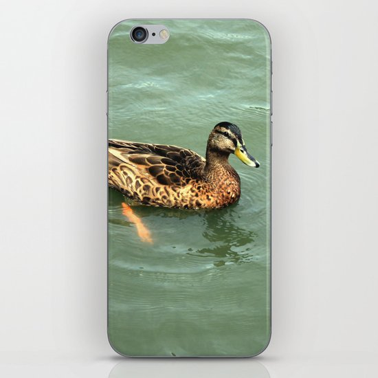 River Paddling iPhone & iPod Skin