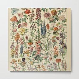Fleurs A / Le Larousse pour tous Metal Print
