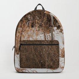 Gated Backpack