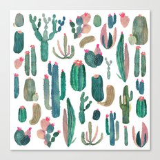 cactus, all of them Canvas Print