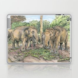 Rescued in Thailand Laptop & iPad Skin