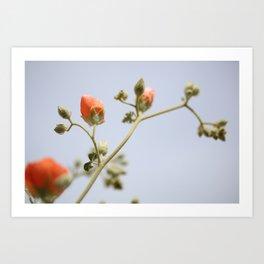 Orange & Blue & Green (Super Bloom) Art Print