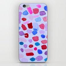 Garden Rocks iPhone & iPod Skin