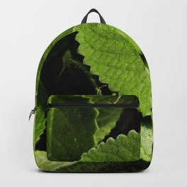 Heap of Mexican mint leaves Backpack