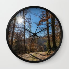 A beautiful day in the woods Wall Clock