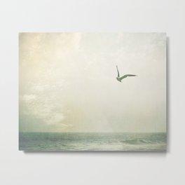 Seagull Bird Beach Photography, Seagulls Birds Ocean Seashore Photo, Sea Shore Seaside Metal Print